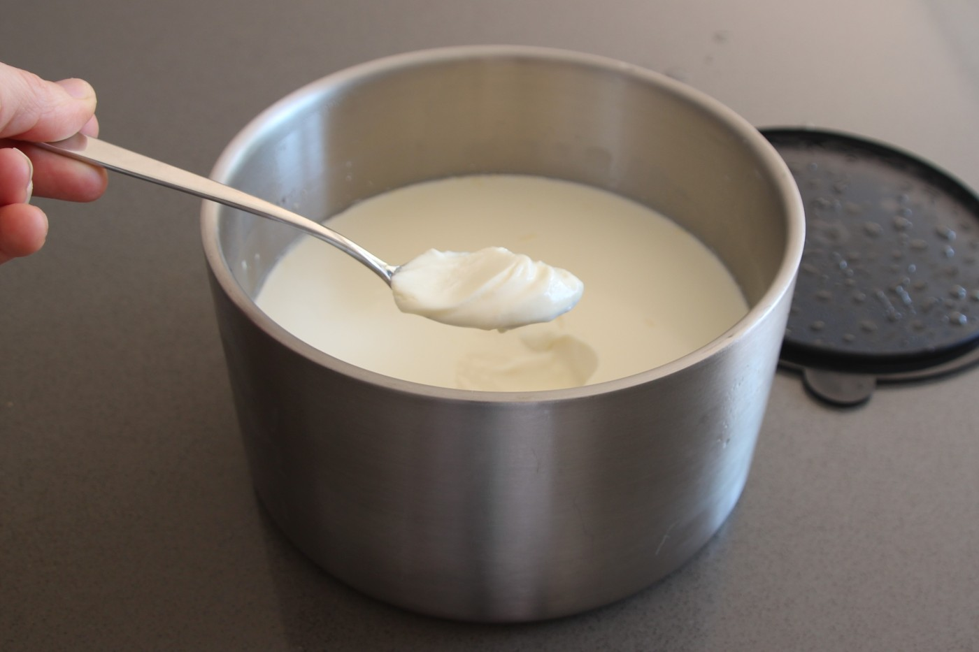 do it yourself thermomix greek yoghurt